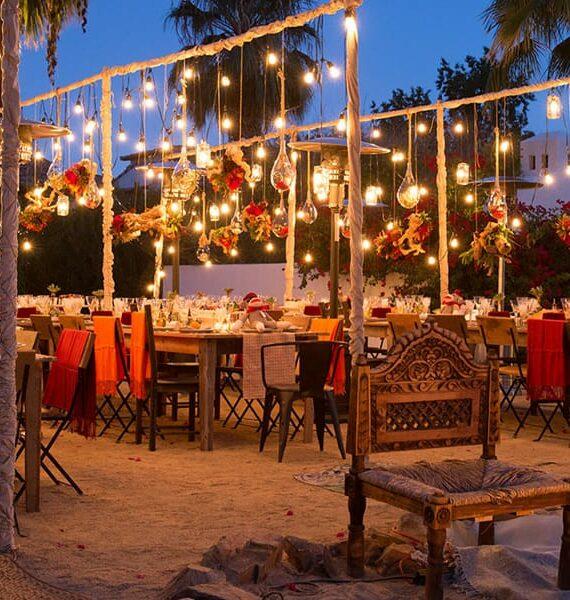 Beer Dinner & Festival
